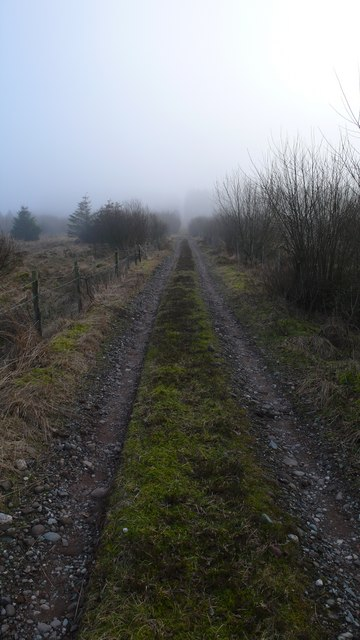 Forestry Track, South of Blackford