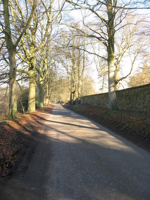 A Long Stone Wall