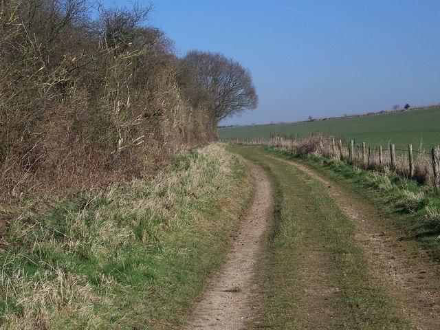 Easy walking towards Tenantry Down