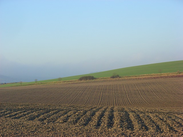 Farmland, South Stoke