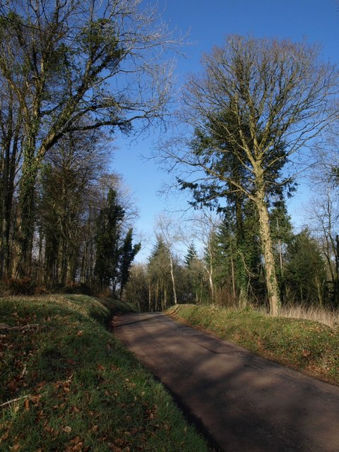 Lane past Ridgeway Plantation