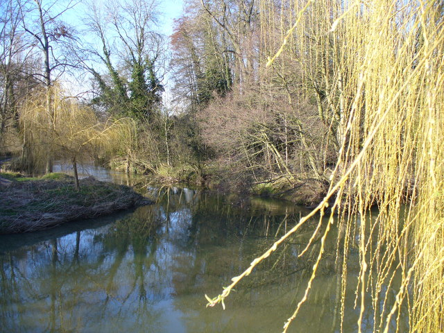 River Mole at Thorncroft