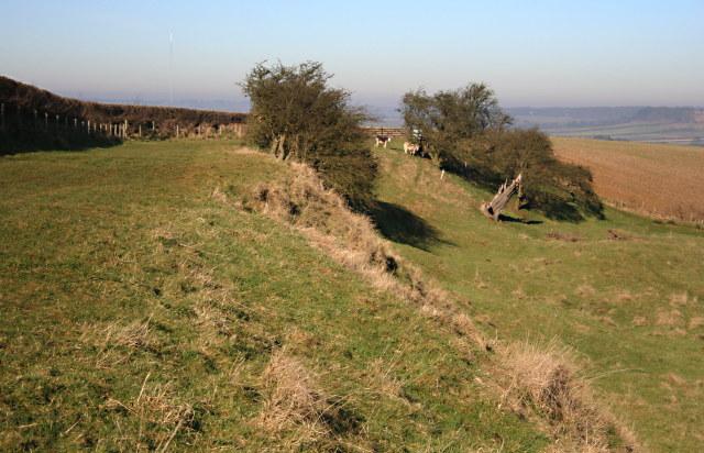 Rough Grassland on Flint Hill