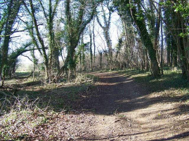 Bridleway toward the Ackling Dyke