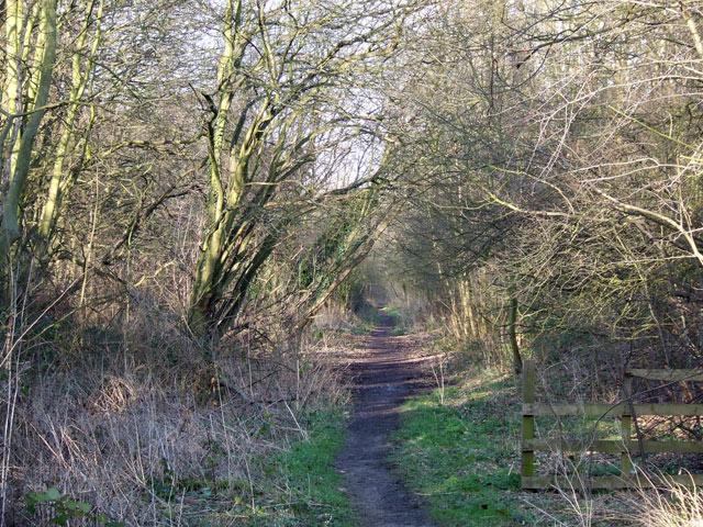 Trackbed of old Railway, Aldersley, Wolverhampton