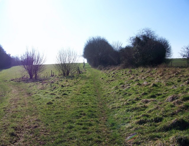 Bridleway beside the Ackling Dyke