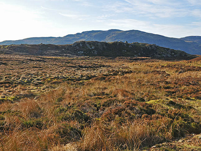 Moorland, bog and crags