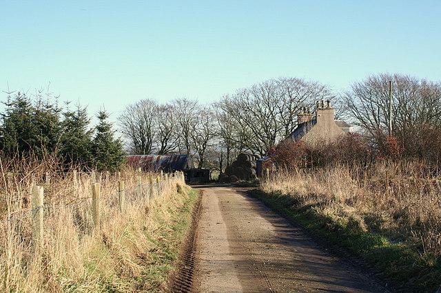 Rush-head Farmhouse