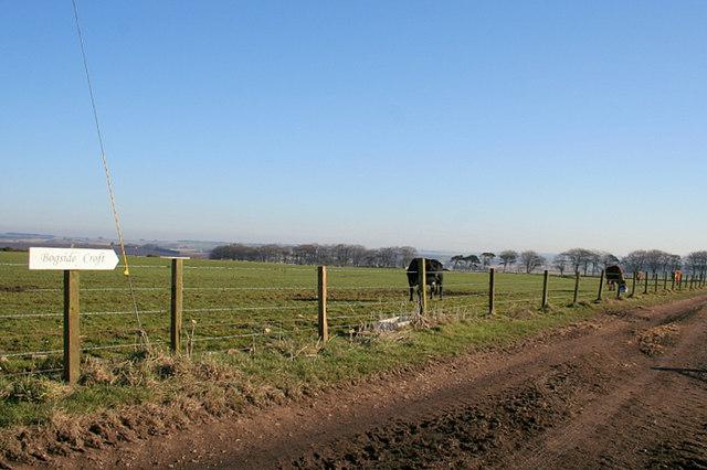 Track to Bogside Croft