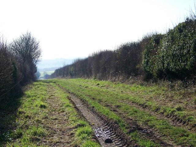Bridleway towards Brockington Down