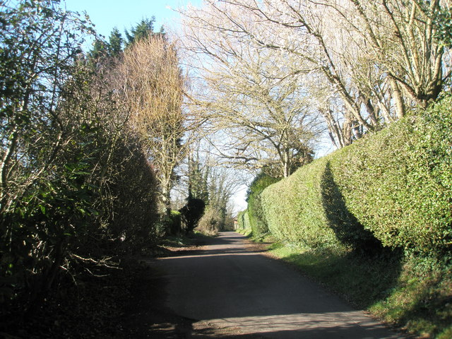 Mill Lane, Langstone