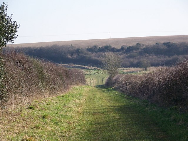 Bridleway junction, Brockington Down