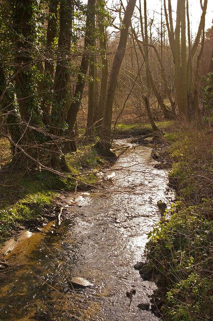 Shagbrook, near Dungate's Farm