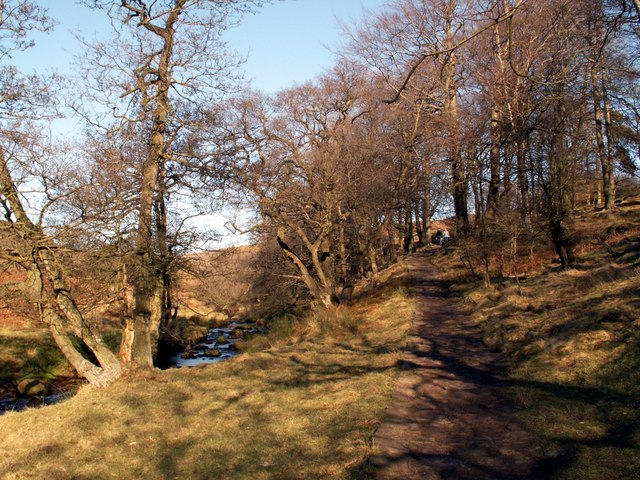Burbage Brook and footpath to the A6187