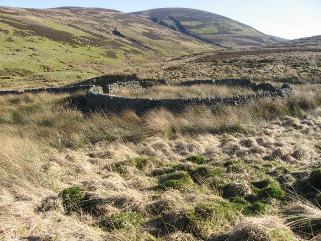 Sheepfold near Snarhead