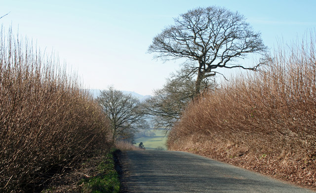 Road To Llanfyllin