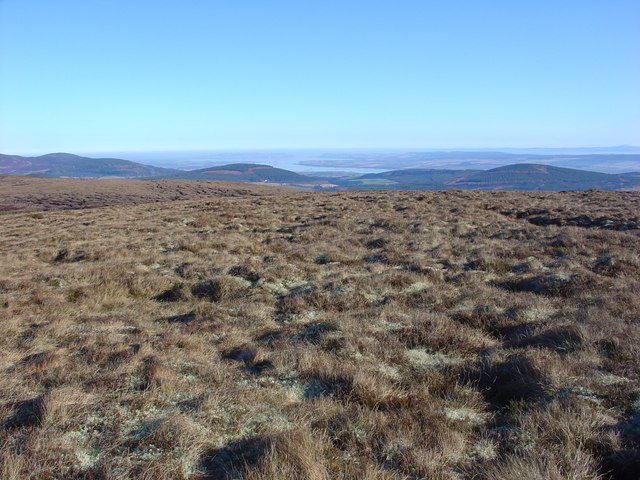 Grass and moss on Meall a Ghuail plateau