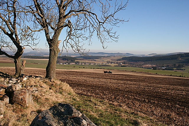 View from Drumfold