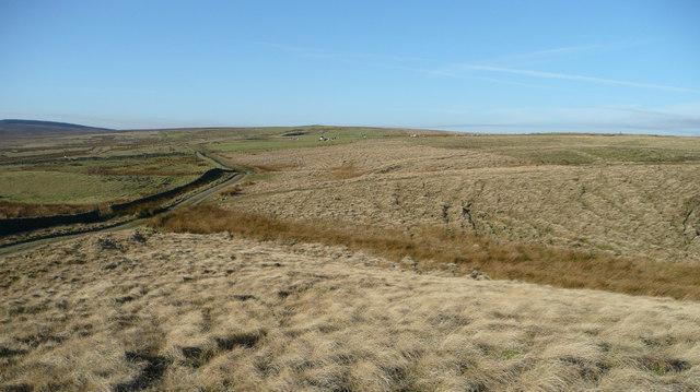 Track across Woodland Fell