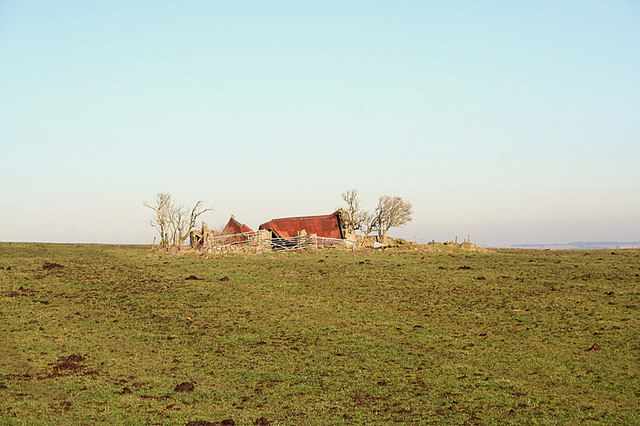 Collapsed cottage amidst  rich farmland