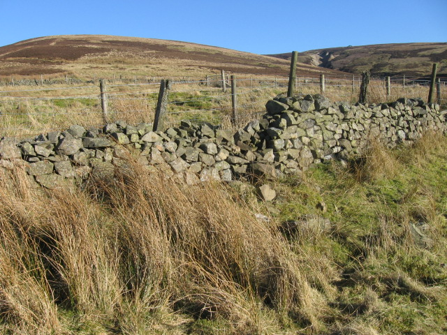 Sheepfold near Glenkip Burn
