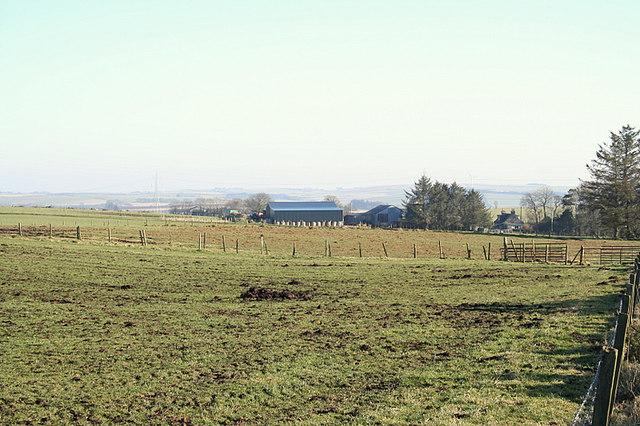 Ladyswell Farm