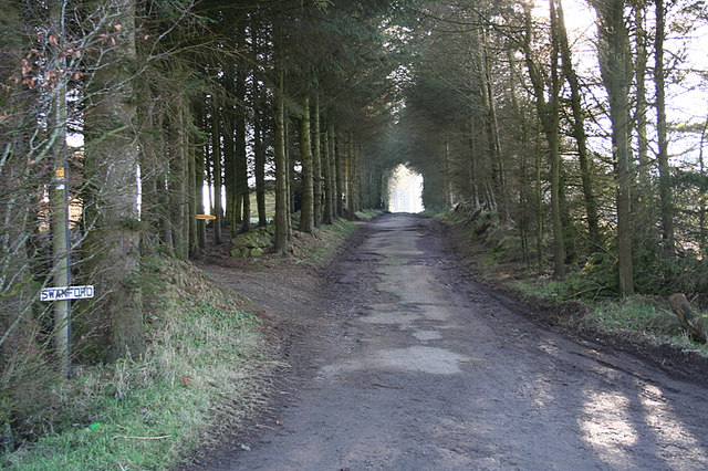The avenue to Swanford