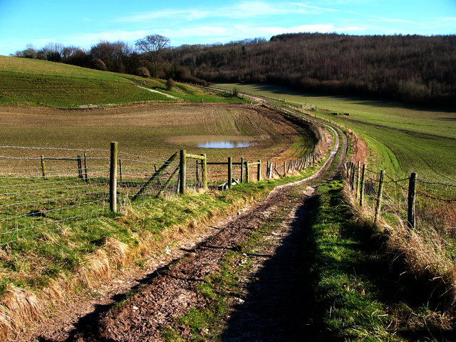Track to Buriton Farm
