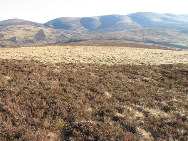 Broad  Law hillside
