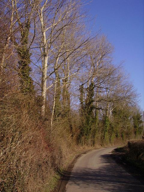 Lower Bullington - The Road to Bullington