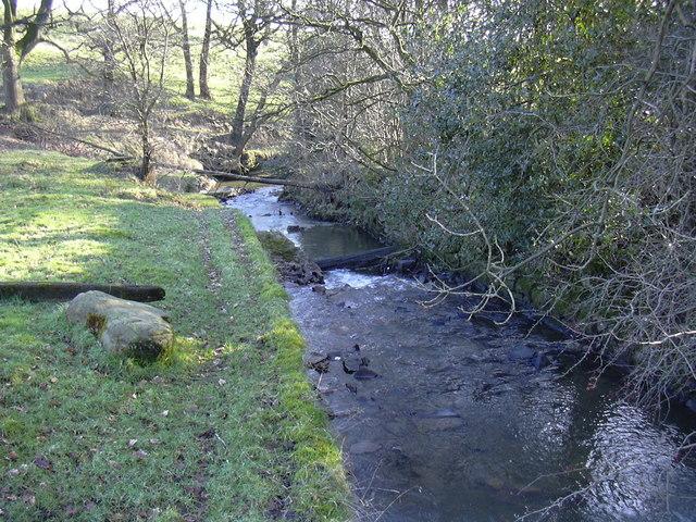 Stream at Edenwood