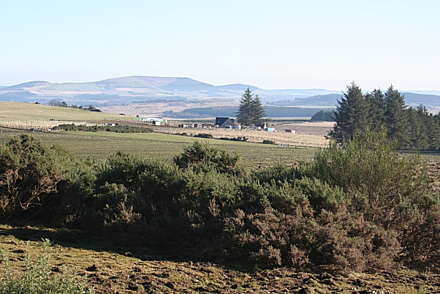 Near Braehead
