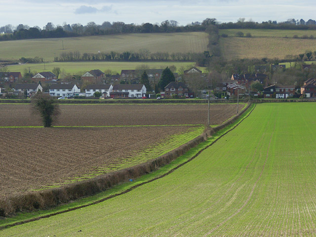 Farmland, Bradenham