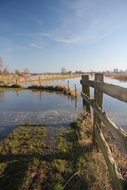 Fence lines on the Ouse Washes