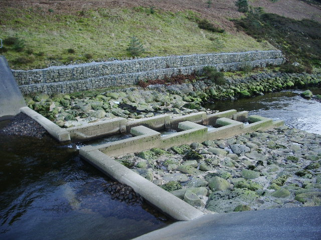 Fish ladder on the River Dunsop
