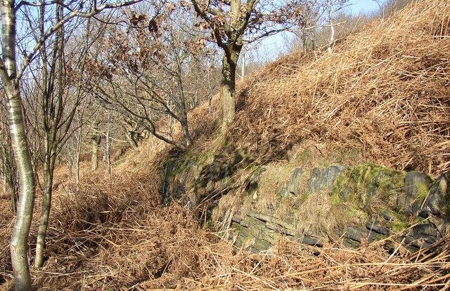 Boundary wall of Storth Wood, Elland