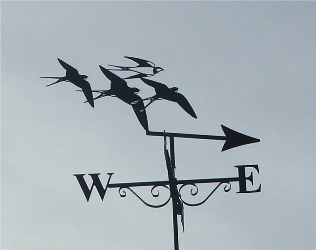 weather vane christine westerback geograph britain. Black Bedroom Furniture Sets. Home Design Ideas