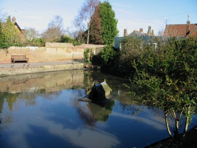 The village pond, Worth