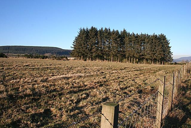 Upper Cuttlehill