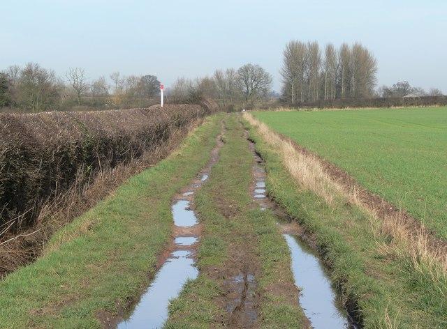 Muddy public bridleway