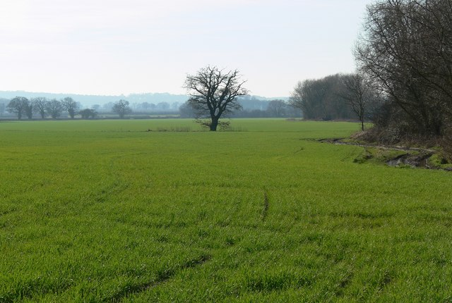 Countryside south of Orton-on-the-Hill
