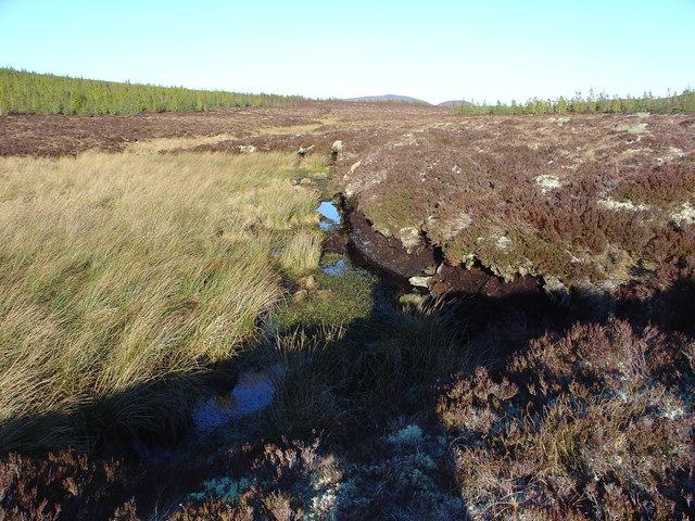 Peat Hag and Stream