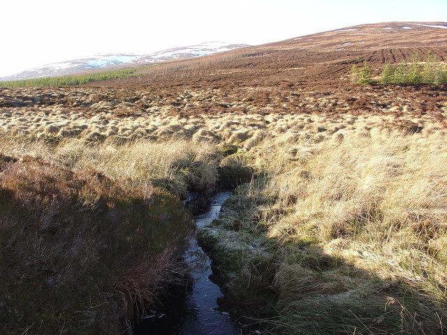 Hill stream