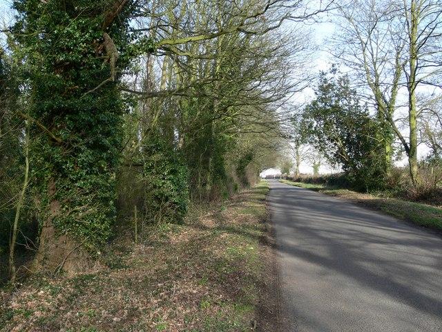 Norton Lane near Orton-on-the-Hill