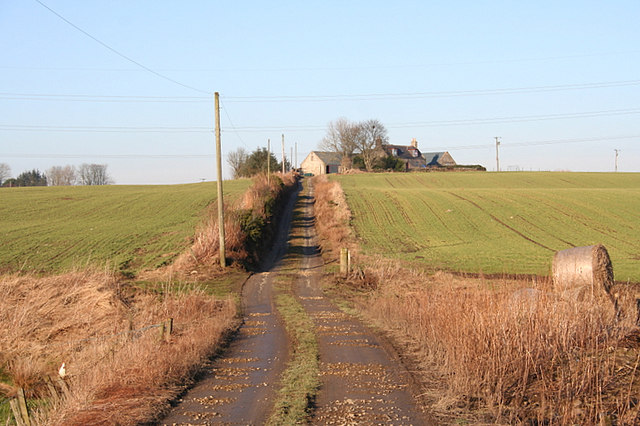 The lane to High Ness Farm