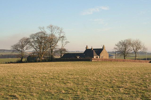 Glenburn of Mildenhill Farm