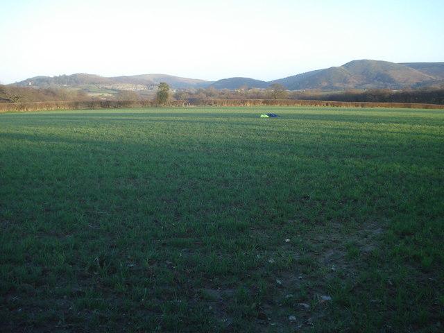 Farmland south of Yardro