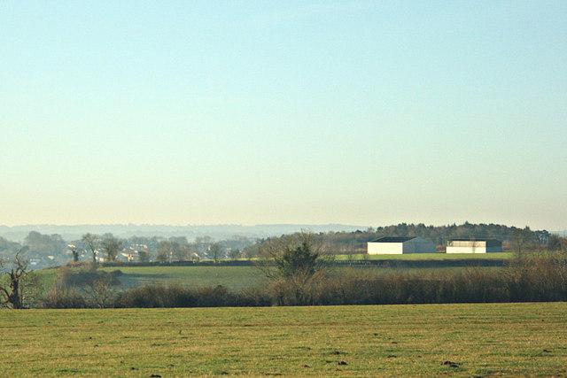 2008 : Fields near Peasedown St. John