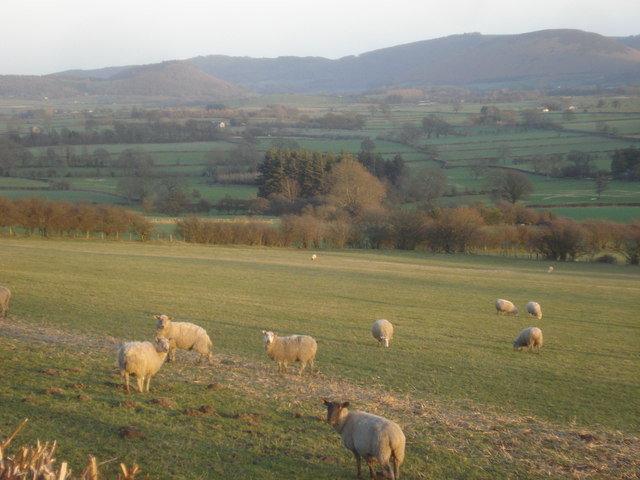 The Radnor Valley