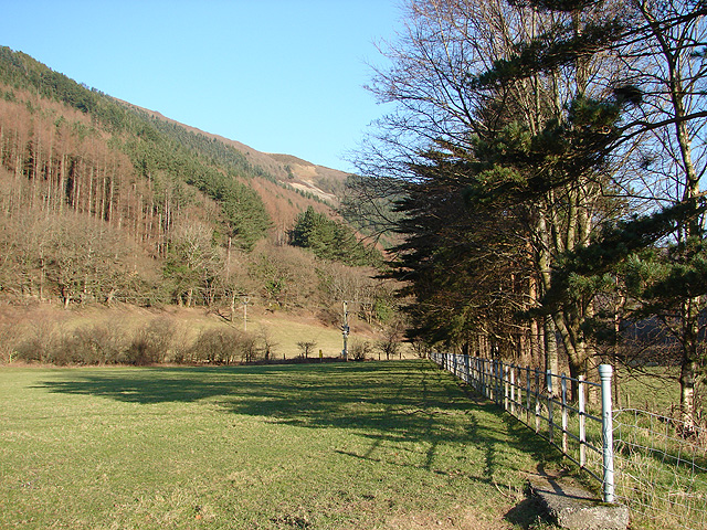 Pasture and then forestry